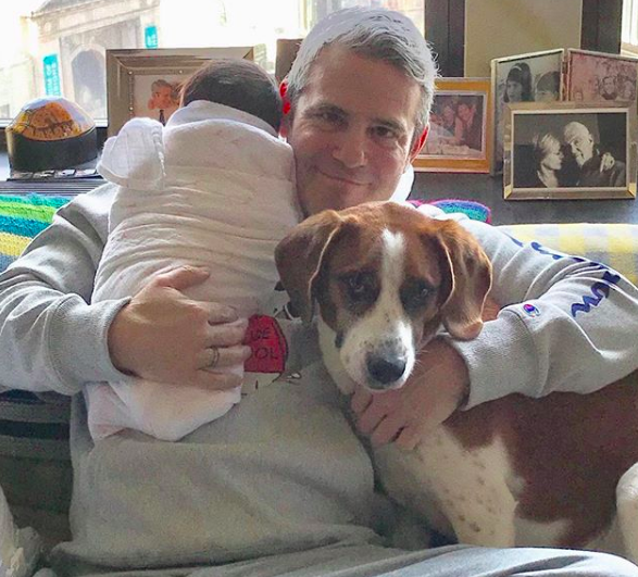 Andy Cohen talks about meeting his baby for the first time. See his sweet story. - BabyNames.com Celebrity Baby Blog