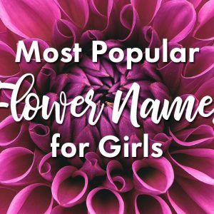Flower behind text: Most Popular Flower Names for Girls