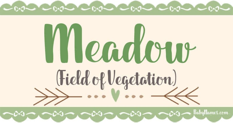 The Name Meadow: Meaning, Origin, and Popularity - Baby Names