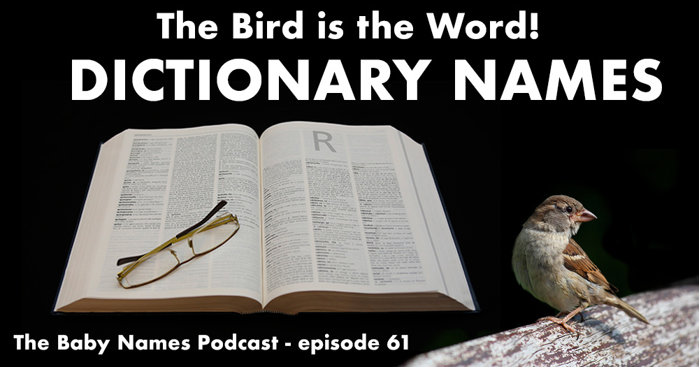 Dictionary Names on the Baby Names Podcast
